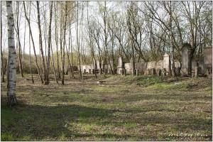 04112016_Ancien-cimetière-de-Calonne_024